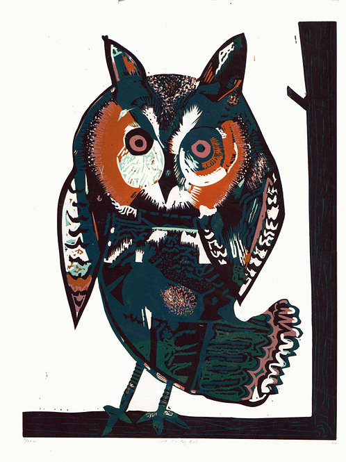 Steve Edwards - West Country Owl
