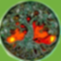 Healing Tree Main with Green sides.png