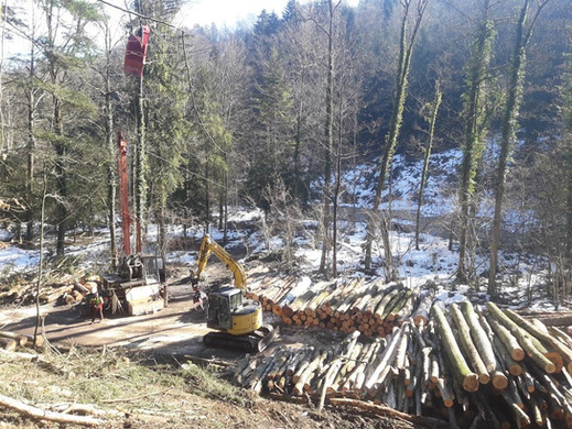 Woodliner Seilkran 20.jpg