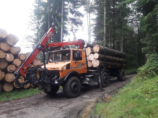 Holztransport mit Unimog 5.jpg