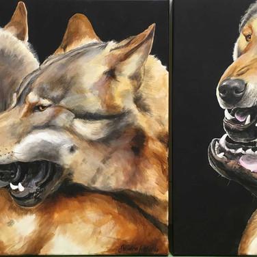 2 teiliges Wolfsbild