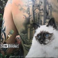 Fotoleinwand mit gemalter Katze