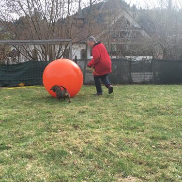 Auch der grosse Ball ist rund