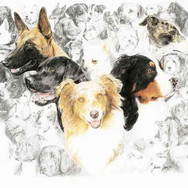 Ein Herz für Hunde