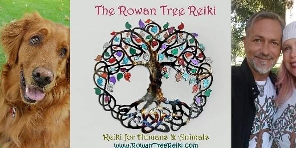 Sound Healing, Reiki, Meditation & Love