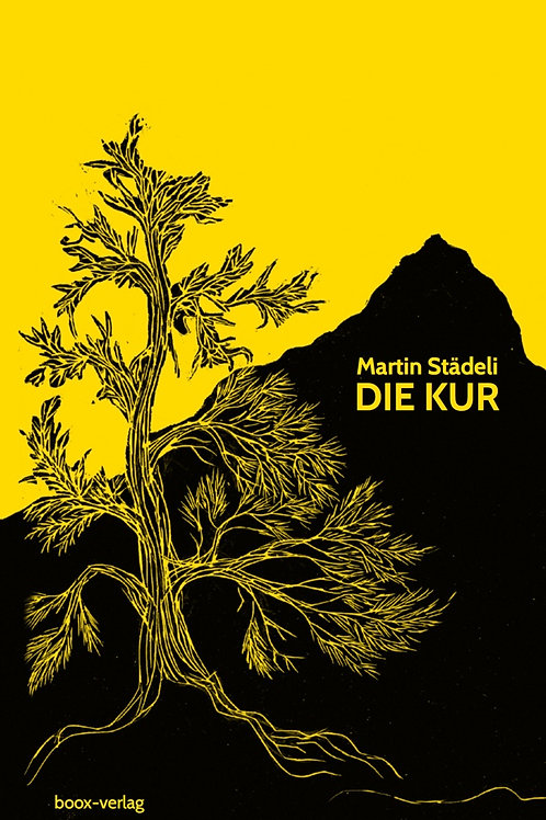 Die Kur (eBook)