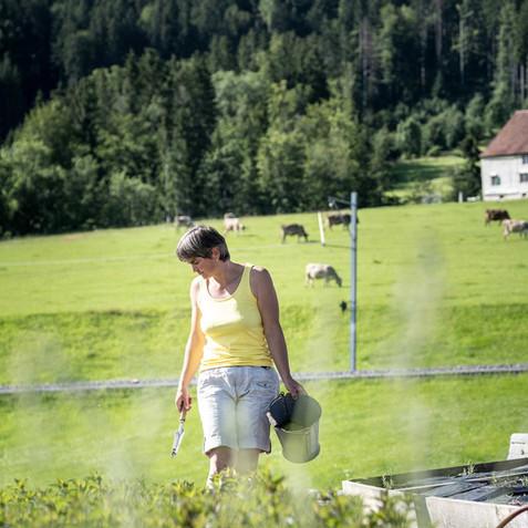 DS_2021_Kraeuterschopf_Appenzell-web20.jpg
