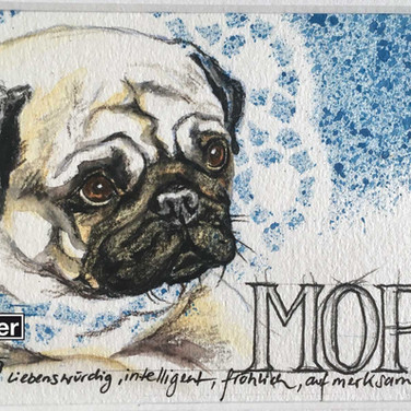 Collage Mops