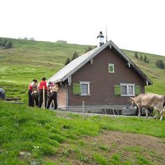 Alp-Nasen8.jpg