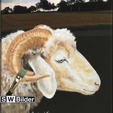 Fotoleinwand mit gemaltem Schaf