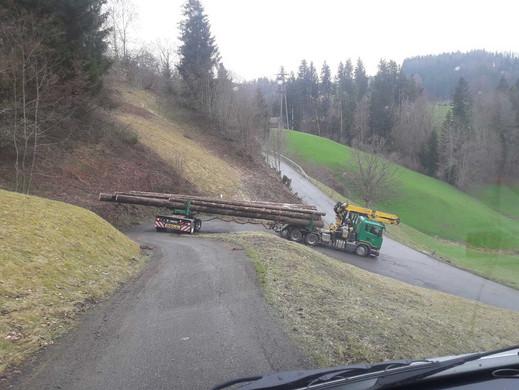 Holztransport-1_web.jpg