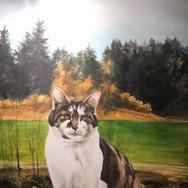 Denkmal Katze