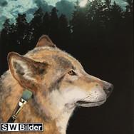 Fotoleinwand mit gemaltem Wolf