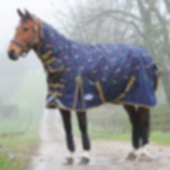 horse rug.jpg
