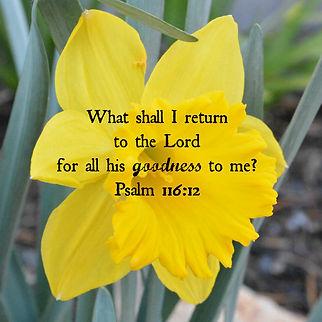 psalm-116-12.jpg