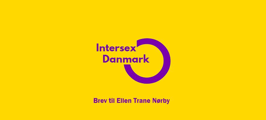 25. Marts. 2019: Åbent brev til Minister Ellen Trane Nørby, på vegne af Amnesty International London