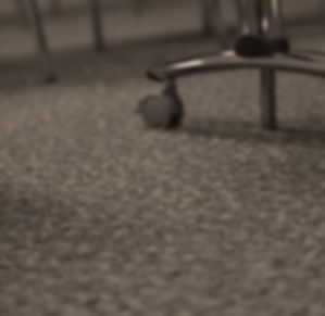 Avance office carpets