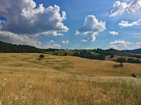 Karin Lansen Photography_Toscane_134.jpg