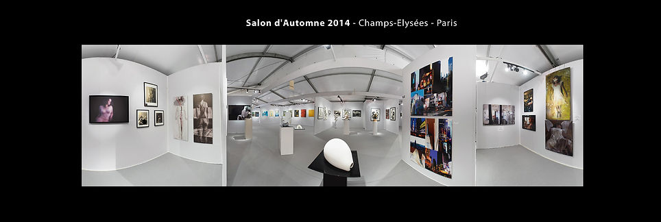 Manhattan XXL | Photographie Karin Lansen | Salon dAutomne Paris 2014