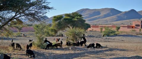 Karin_Lansen_Photography_Sud_Maroc_web_54.jpg