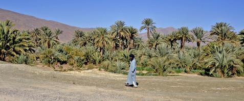 Karin_Lansen_Photography_Sud_Maroc_web_68.jpg