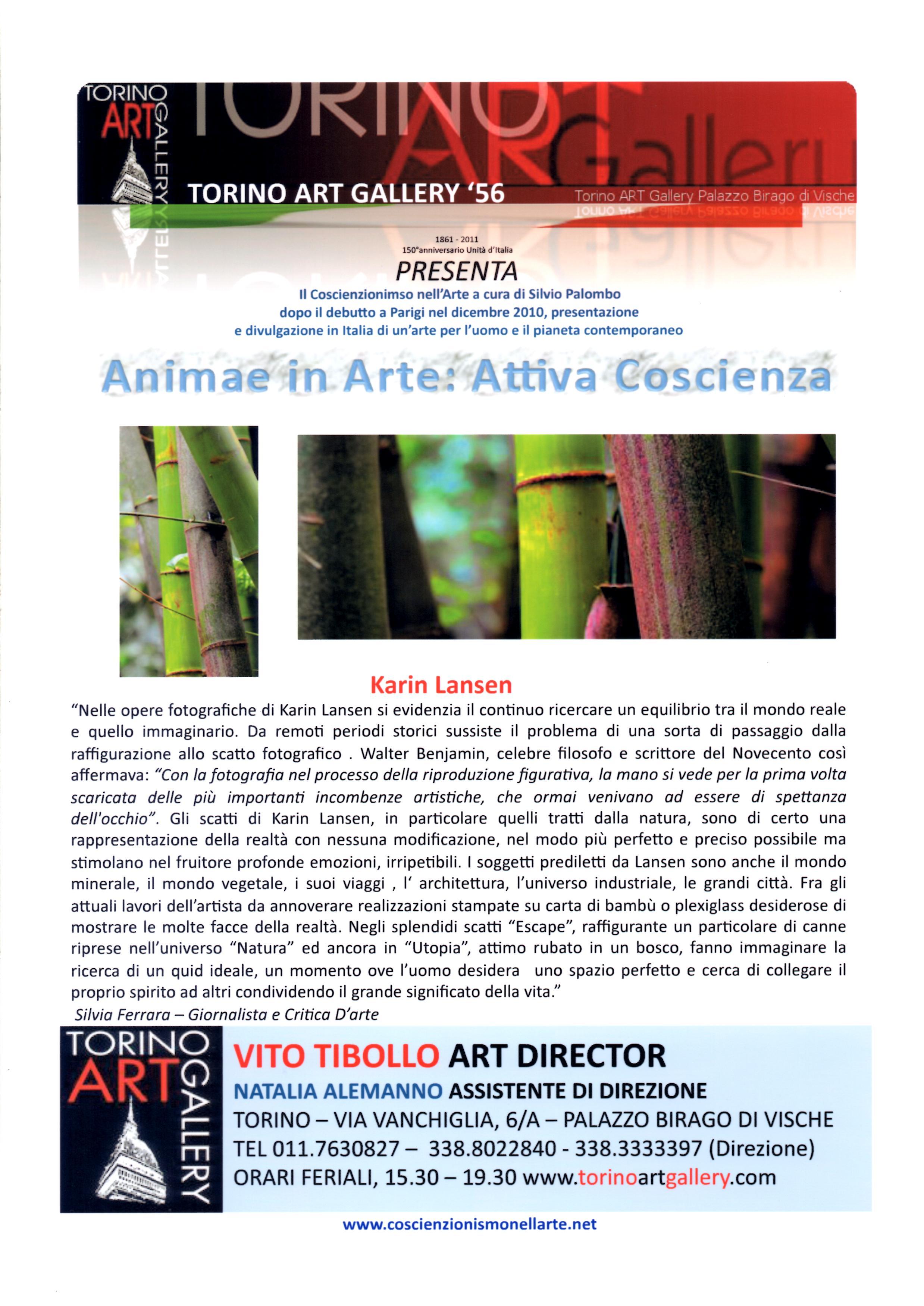 Torino Art Infos - Mai 2011