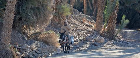 Karin_Lansen_Photography_Sud_Maroc_web_4.jpg