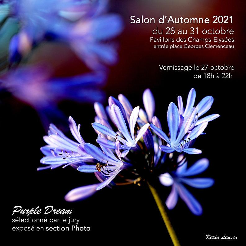 Karin_Lansen_Photography_Purple-Dream_Salon-Automne-2021.jpg