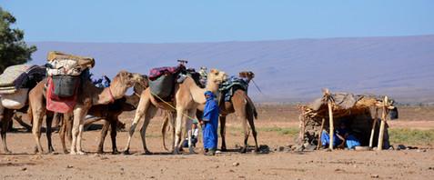 Karin_Lansen_Photography_Sud_Maroc_web_5.jpg
