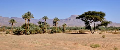 Karin_Lansen_Photography_Sud_Maroc_web_73.jpg