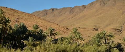 Karin_Lansen_Photography_Sud_Maroc_web_56.jpg