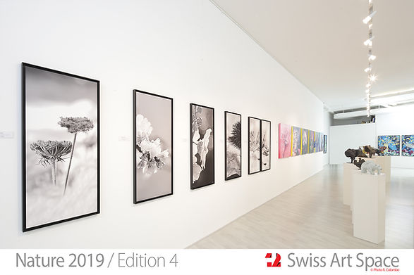 18_Nature 19_Swiss Art Space.jpg
