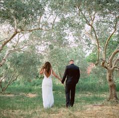 חתונה במטע זיתים. גליל אמיתי