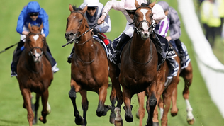 British racing's leading organisations commit to improving inclusion and diversity