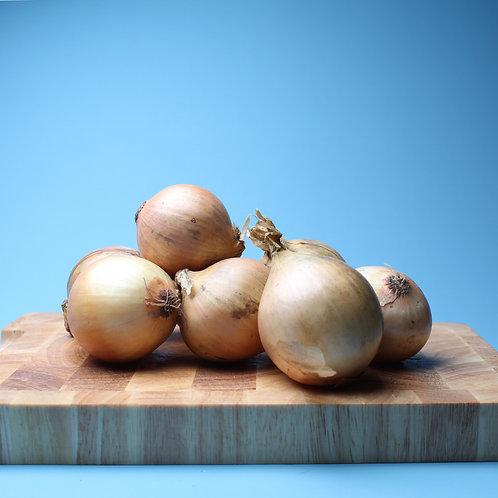 White onions - x5