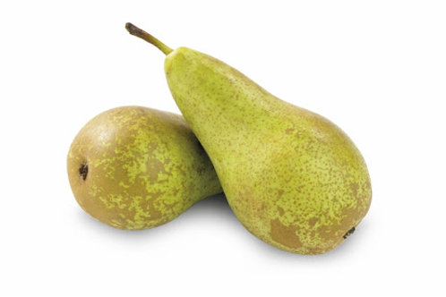 Conference Pears - 4
