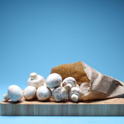 White Mushrooms - Punnet