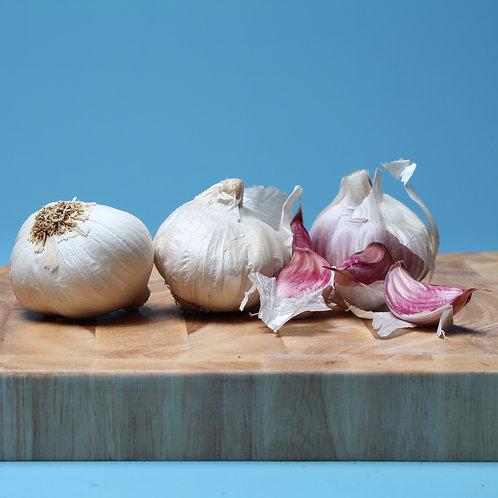 Garlic - x3