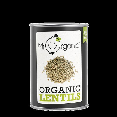 Organic Lentils (400g)
