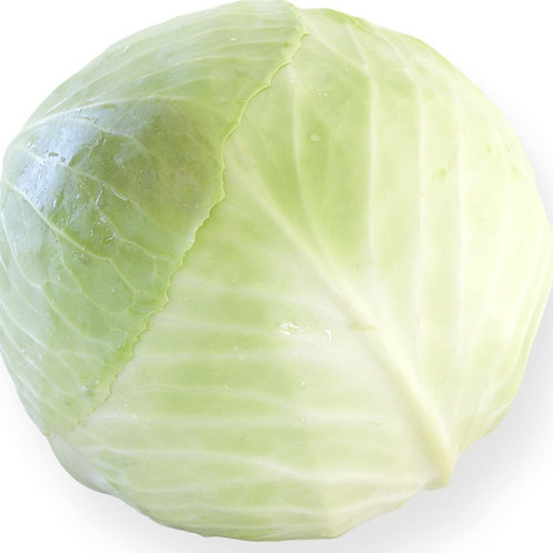 Whole White Cabbage