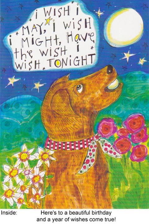 I wish I may - #nd-187