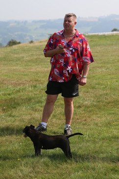 Micky and Holly dog on the moor