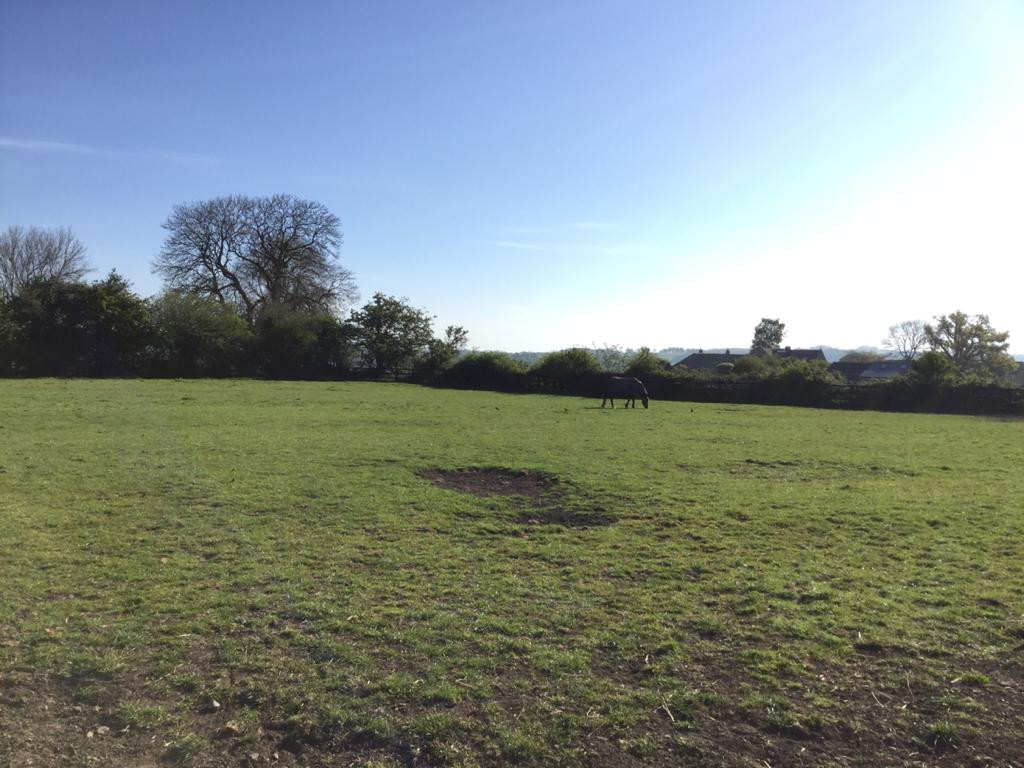 Well fenced paddocks