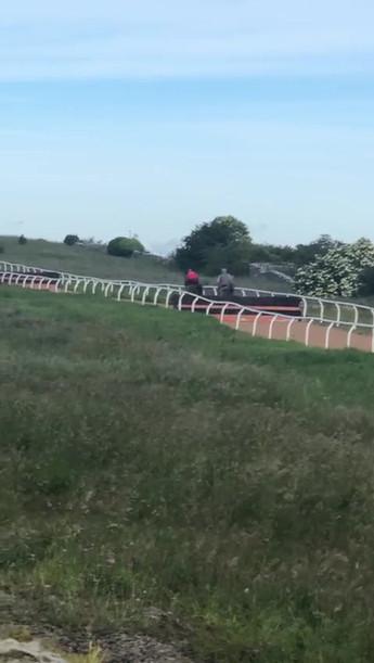 Hurdles on the 3F gallop