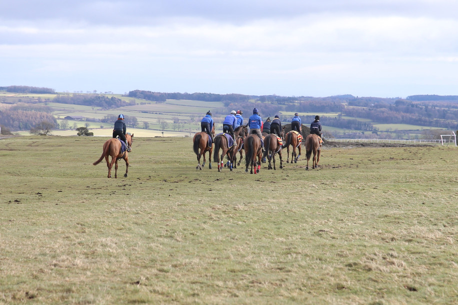 Another Gallop to do