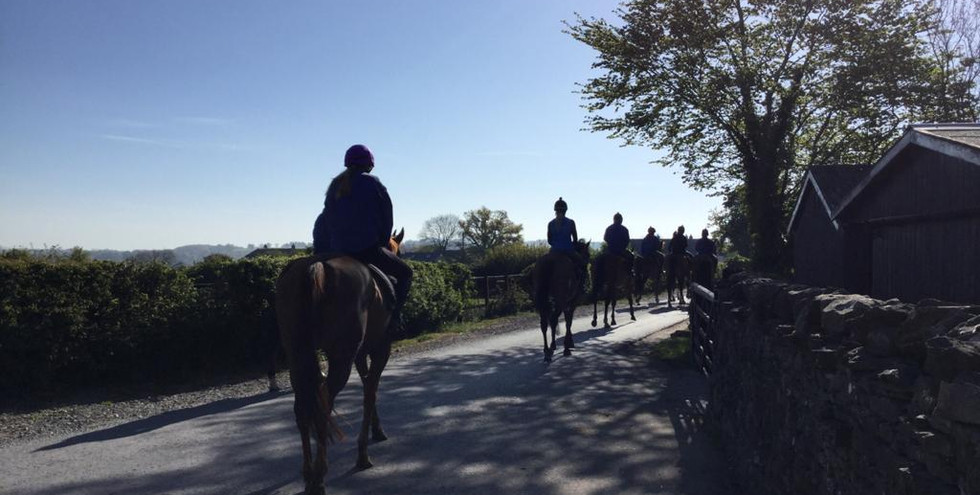 Down the lane to the gallops