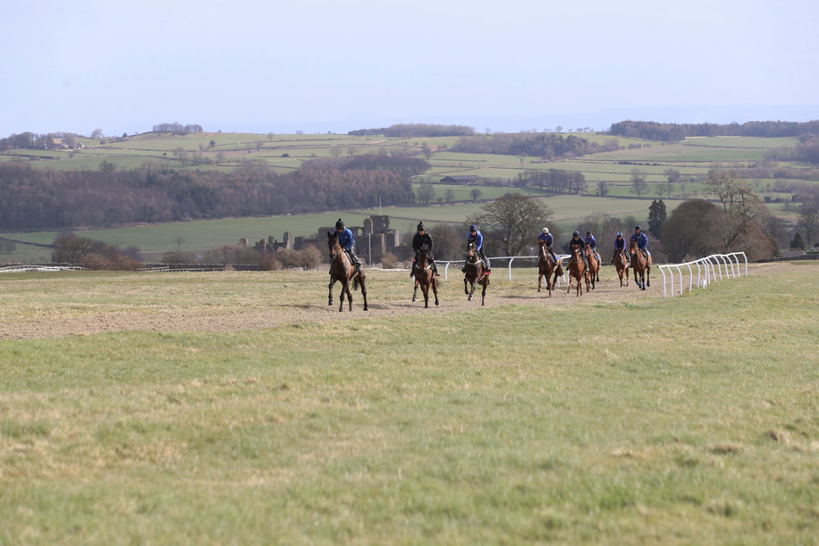 7f gallop with Middleham castle