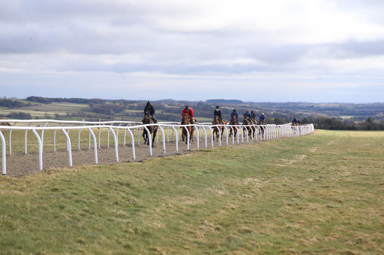 Up The 7F Gallop