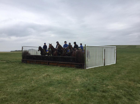 The Team at a French Hurdle on Crossbank