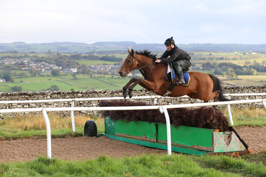 Jumping a brush (or French) hurdle